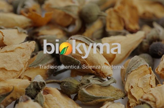 BIOKYMA S.r.l.